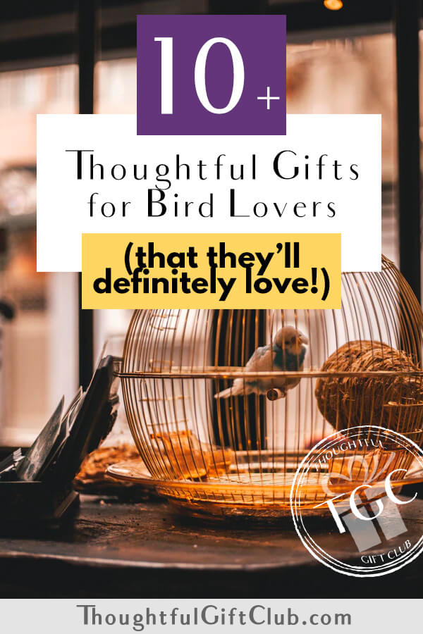 Thoughtful Gifts for Bird Lovers: Bird Gifts (for Every Budget!)