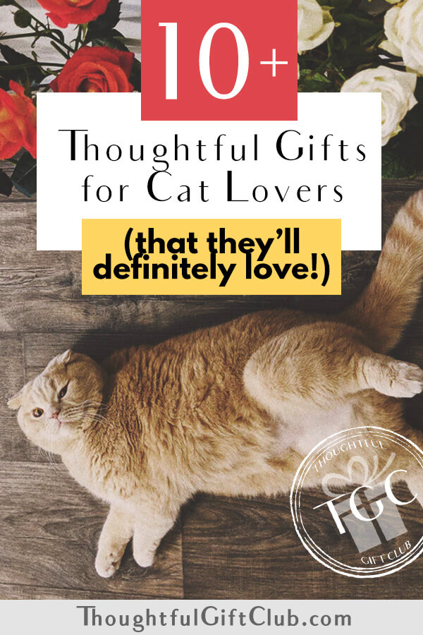 Thoughtful Gifts for Cat Lovers: Cat Themed Gifts (for Every Budget!)