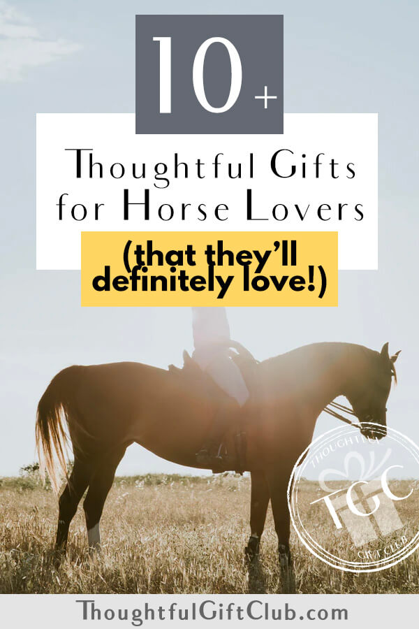 Thoughtful Gifts for Horse Lovers: Horse Themed Gifts (for Every Budget!)