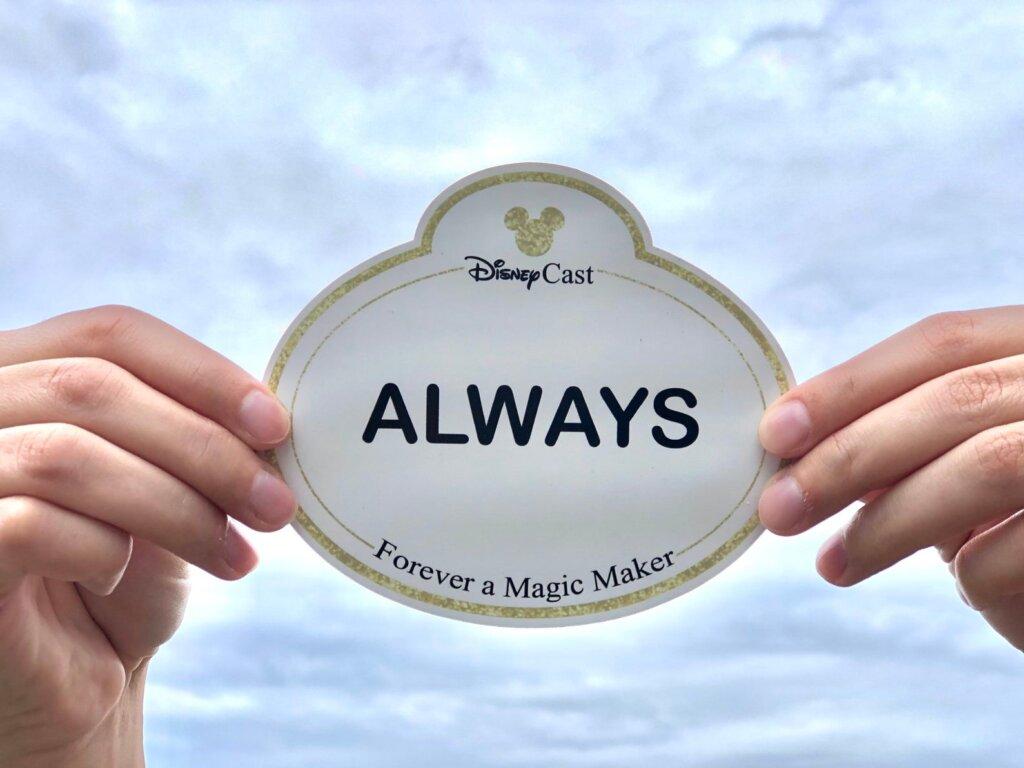 Magic maker magnet
