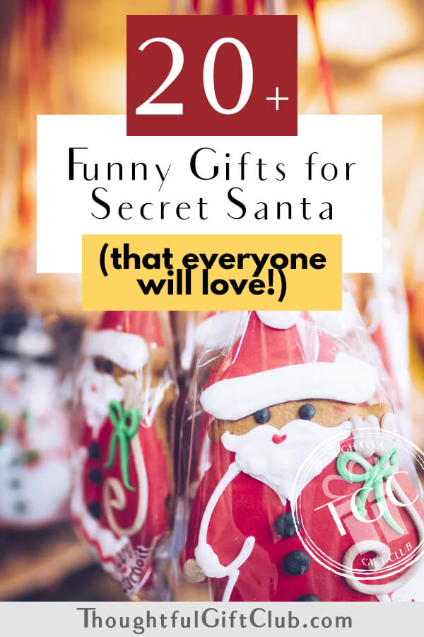 20+ Funny Secret Santa Gifts that Everyone Will Love