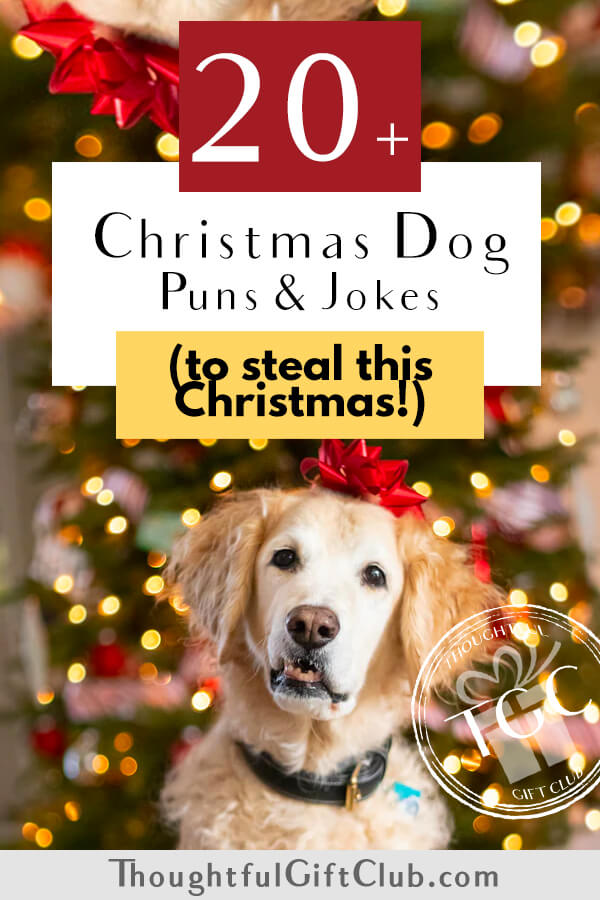 20+ Christmas Dog Puns that Will Earn You a Round of A-Paws